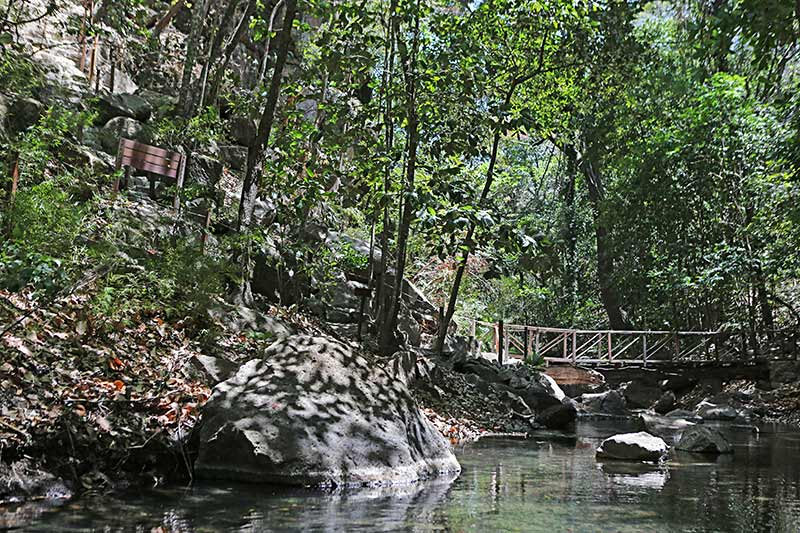 Tour Costa Rica with Family at Rio Period